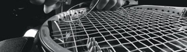 wilson-strings