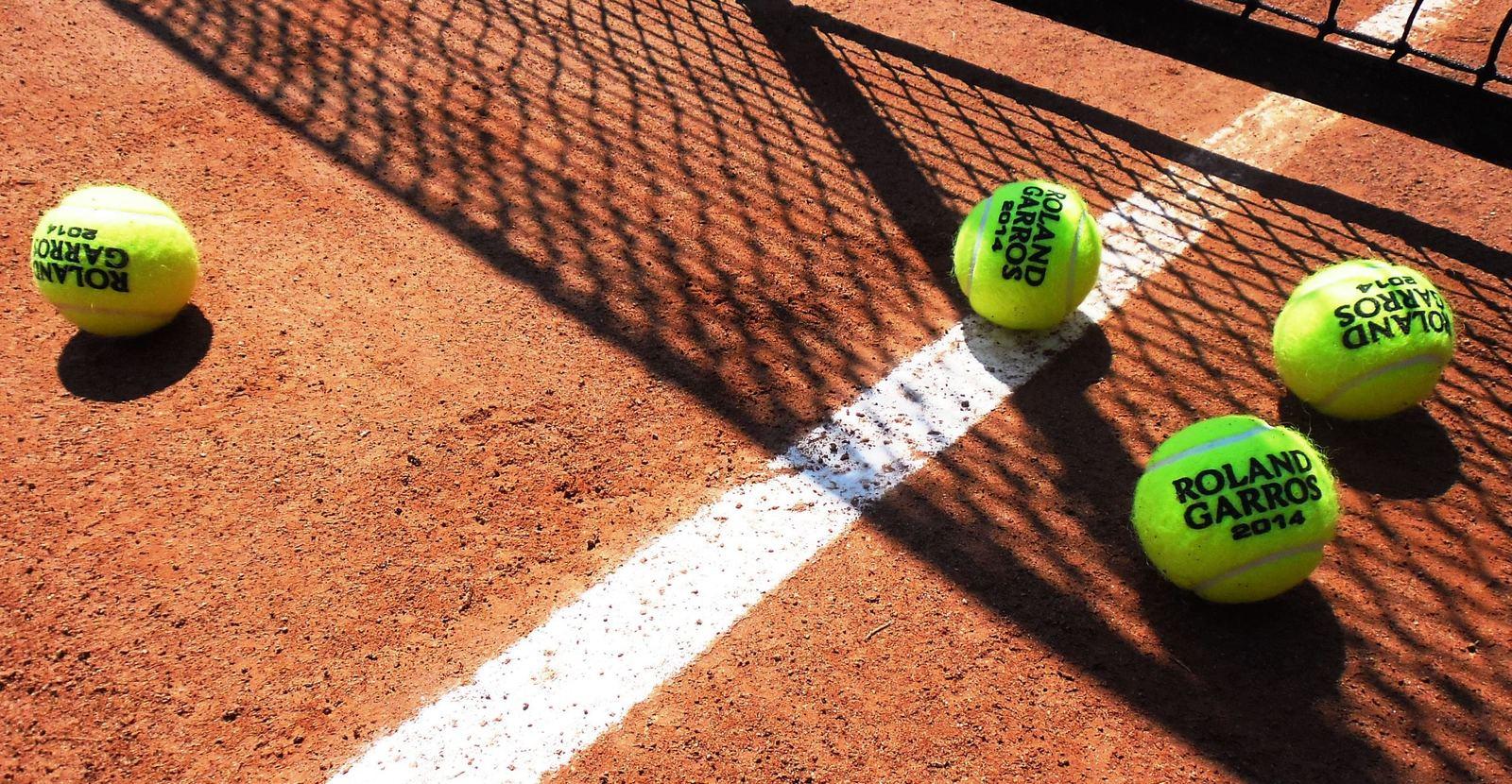 Roland Garros 2011 скачать